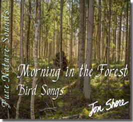 Morning in the Forest  Bird Songs by Jon Shore