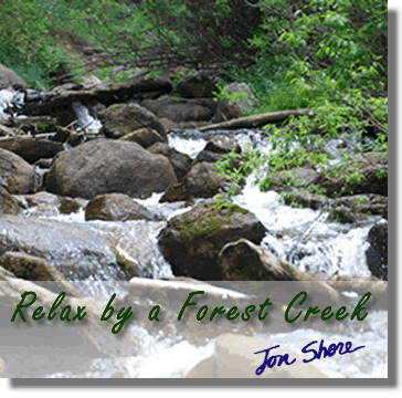 Relax by a Forest Creek by Jon Shore
