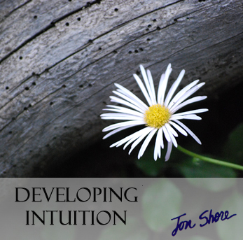 Developing Intuition by Jon Shore